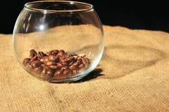 Fried Coffee Beans in der Glasschüssel Stockfoto