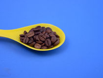Fried coffee beans Stock Photography
