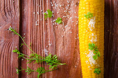 Fried corn cobs with sea salt and herbs Royalty Free Stock Photography