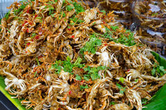 Fried crab Royalty Free Stock Images