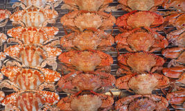 Fried crabs in night market Royalty Free Stock Images