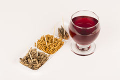 Fried crickets molitors locusts insects glass wine Royalty Free Stock Photo