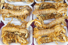 Fried crispy mantis shrimp in seafood market. Royalty Free Stock Photos