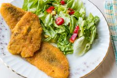 Fried Crispy Sardine Fish Plate con insalata/frutti di mare Sardalya immagine stock libera da diritti