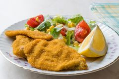 Fried Crispy Sardine Fish Plate mit Salat und Zitrone/Meeresfrüchten Sardalya Lizenzfreies Stockfoto