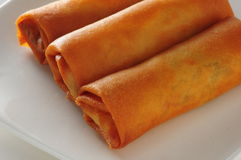 Fried crispy spring roll Royalty Free Stock Image