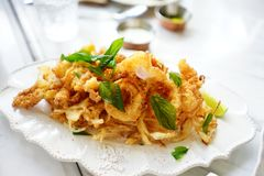 Fried crispy squid appetizer. Luxury snack and appetizer fried crispy squid on white disk, ready for eat stock photos