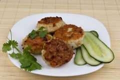 Fried cutlet. S white plate with vegetables Royalty Free Stock Photos