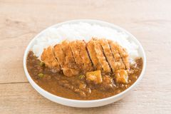Fried cutlet pork with curry on rice Royalty Free Stock Images