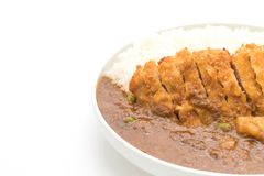 Fried cutlet pork with curry on rice Royalty Free Stock Photo