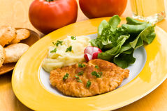 Fried cutlet - schnitzel - with puree and salad Royalty Free Stock Photos