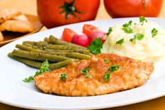 Fried cutlet - schnitzel - with puree and salad Stock Images
