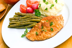 Fried cutlet - schnitzel - with puree and salad Royalty Free Stock Image