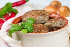 Fried cutlets with basil Stock Images
