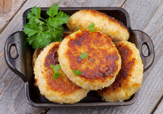 Fried Cutlets Stock Photography
