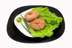 Fried cutlets with vegetables Stock Photos