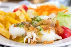 Fried cuttle fish with salad Stock Images