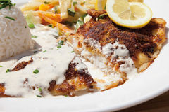 Fried deep sea perch with fragrant rice and cream sauce Stock Images