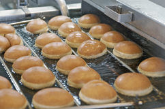 Fried Donuts On Conveyor Stockfotos