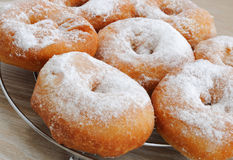 Fried donuts in powdered sugar closeup Stock Photos