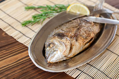 Fried dorado on the plate Royalty Free Stock Photography