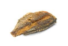 Fried Dried Fish sur le fond blanc images stock