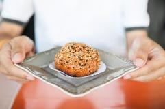Fried Dumpling, Fried Baozi Bun imagens de stock royalty free
