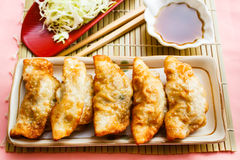Fried Dumpling - Gyoza. Royalty Free Stock Image