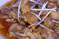 Fried dumpling stuff pork Stock Images