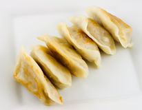 Fried Dumplings 2. Closeup of fried dumplings on a plate Royalty Free Stock Photo