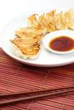 Fried dumplings Royalty Free Stock Photo