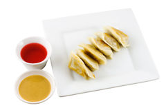 Fried Dumplings 3 Stock Image