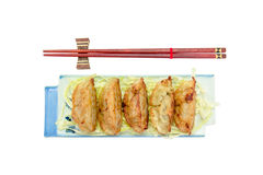 Fried dumplings or gyoza isolated on white background,clipping path Stock Images