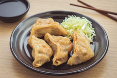 Fried dumplings on plate Royalty Free Stock Photo
