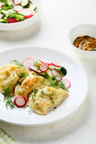 Fried dumplings with potato royalty free stock images