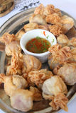 Fried dumplings Royalty Free Stock Photography