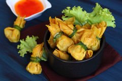 Fried dumplings is vegetarian food. Royalty Free Stock Photo