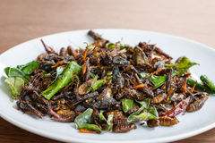 Fried edible insects mix on white plate Stock Photo