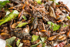 Fried Edible Insects Mix With Green Lime Leaves Stock Photography