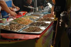 Fried Edible Insects Stock Photography