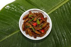 Fried edible insects on white plate and green leaf Royalty Free Stock Images