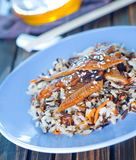 Fried eel with rice Royalty Free Stock Photo