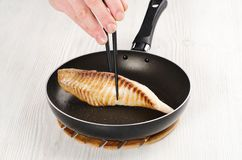 Fried eel for sushi Stock Photography