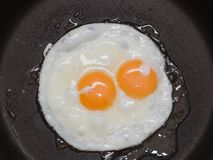 Free Fried Egg Royalty Free Stock Photo - 10294605