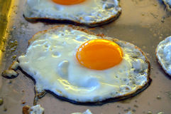 Fried egg. On a plate Stock Photo