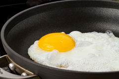Fried egg. Sunny side up in a pan Royalty Free Stock Photos