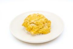 Fried Egg Photographie stock libre de droits