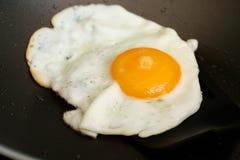 Fried Egg Fotos de Stock Royalty Free