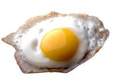 Fried Egg Stockfoto