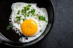 Fried Egg Foto de archivo libre de regalías
